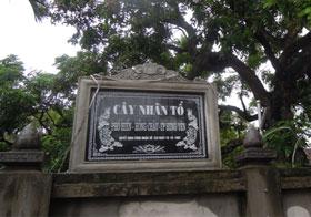 nhan-to-hung-yen